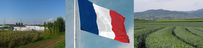 AcuComm's Daily Full Access Project – France – Biogas plant