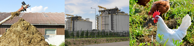 AcuComm's Daily Full Access Project – Denmark Biogas Plant