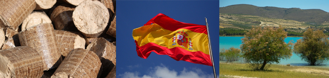 AcuComm's Daily Full Access Project – Spain Biomass Pellet Plant