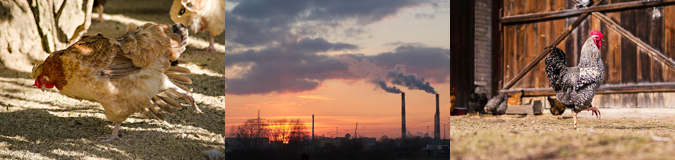 AcuComm's Daily Full Access Project – Ukraine Biomass Plant