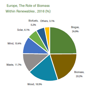 biomassfactfile2