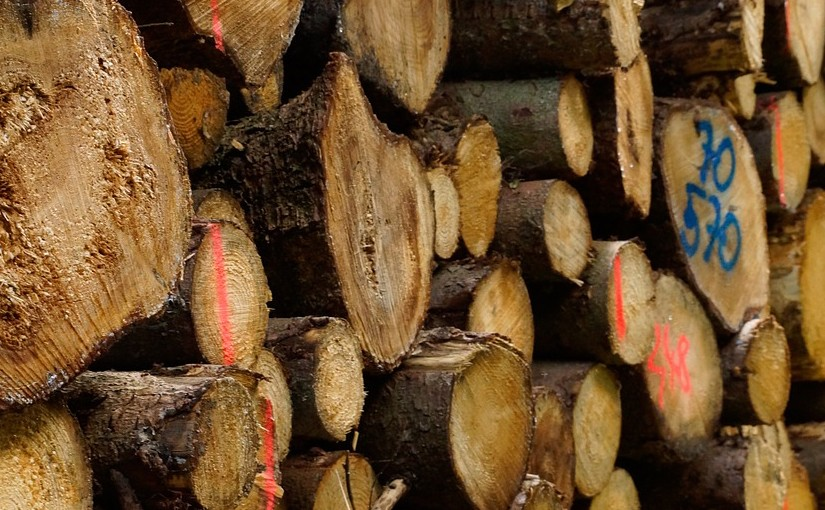 Introducing the European Biomass Investment Fact File 2018