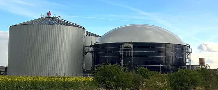 Global AD/Biogas